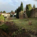 Blick in den Garten 1