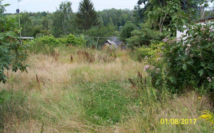 Grundstücksansicht II