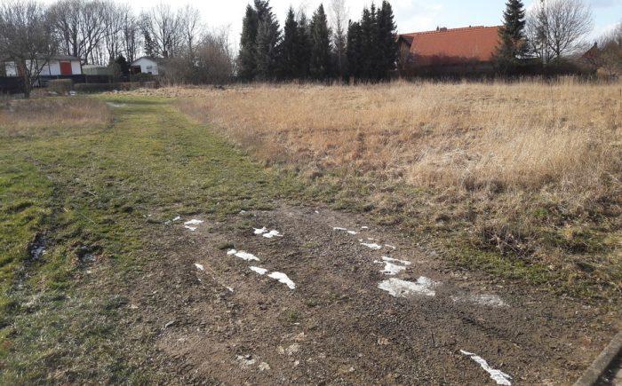 Grundstücksansicht IV