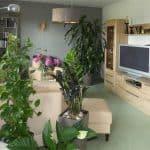 Wohnzimmer-1b